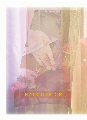 Image link to Hair Design showing cutting technique